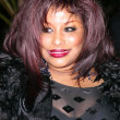 Chaka Khan — Stock Photo