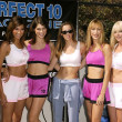 Perfect 10 Model Boxers — Stock Photo