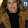 Sophie B. Hawkins — Photo