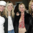 Постер, плакат: Natasha Henstridge Alana Stewart Nicolette Sheridan and a friend