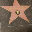 Drew Barrymore's Star — Stock Photo