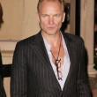 Постер, плакат: Sting Alison Krauss and T Bone Burnett