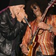 Michael Wincott and Slash — Stockfoto #17537921