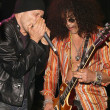 Stock fotografie: Michael Wincott and Slash