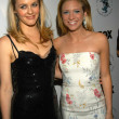 Постер, плакат: Alica Silverstone and Brittany Snow