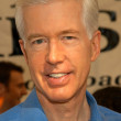 Stock Photo: Gray Davis