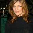 Stock Photo: Rene Russo at MAP Awards - Musicians Assistance Program Fourth Annual Fundraiser, Beverly Hills Hotel, Beverly Hills Calif., 11-05-03
