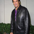 Foto de Stock  : Robert Davi