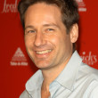David Duchovny — Stock Photo #17716637