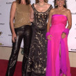Постер, плакат: Cindy Crawford Joely Fisher and Julia Louis Dreyfus