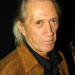 David Carradine - Stock Photo