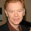 David Caruso - Stock Photo