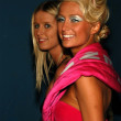 Постер, плакат: Nicky and Paris Hilton