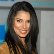 Roselyn Sanchez - Stock Photo