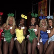 Playboy Bunnies — Stock Photo