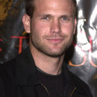 Matt Davis - Stock Photo