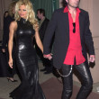Постер, плакат: Pamela Anderson and Tommy Lee