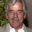 Dennis Farina — Stock Photo