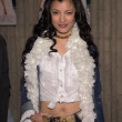 Kelly Hu — Foto de stock #17914777