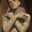 Stock Photo: Wax Figure Mummy