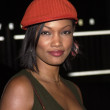 Stock Photo: Garcelle Beauvais-Nilon
