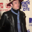 Scott Weiland of Stone Temple Pilots - 图库照片