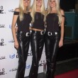 The dahm triplets - Stock Photo