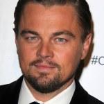 Постер, плакат: Leonardo DiCaprio