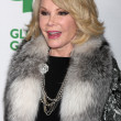 Постер, плакат: Joan Rivers
