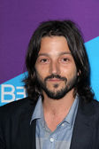 Diego Luna — Stock Photo