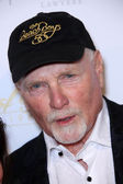 Mike Love — Stock Photo