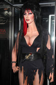Elvira Wax Figure — 图库照片