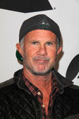 Chad Smith — Stock Photo