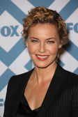 Connie Nielsen — Stock Photo