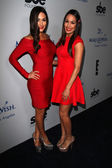 Brie Bella and Nikki Bella — Foto Stock