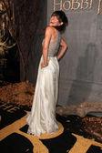Evangeline Lilly — Stock Photo