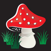 Vector drawing of mushroom with grass on a black background. — Stock Vector
