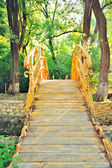 The rise of the wooden footbridge with handrails. — Stock Photo