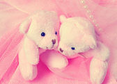Two amusing pink teddy bear on pink — Stok fotoğraf