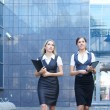 Stock Photo: Young attractive business women