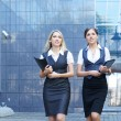 Young attractive business women — Stock Photo