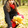 Young attractive girl in autumn park — Stock Photo #14930945