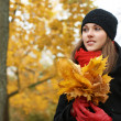 Young attractive girl in autumn park — Stock fotografie
