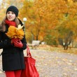 Young attractive girl in autumn park — Stock Photo #14931743