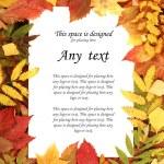 Colorful autumn frame — Stock Photo #14963481