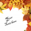 Stock Photo: Colorful autumn frame
