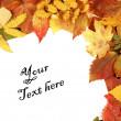 Colorful autumn frame — Stock Photo