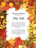 多彩的秋天帧 — 图库照片
