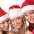 Christmas group portrait — Stock Photo #14978003