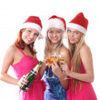 Christmas group portrait — Stock Photo #14978021
